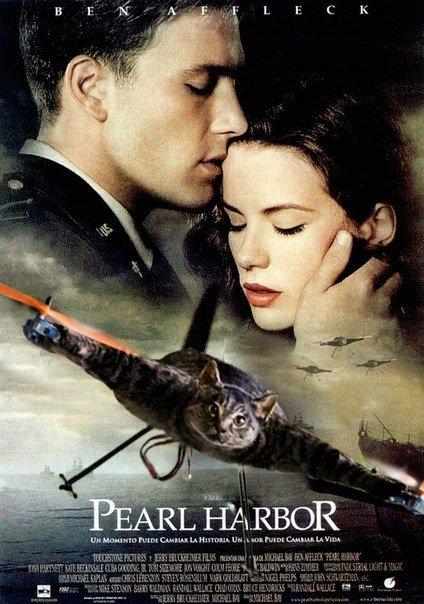 PEARL HARBOR. .. I got OC on my screen and I ain't afraid to thumb it, thumb it, thumb it. It's funny and I know it! pearl harbor cat