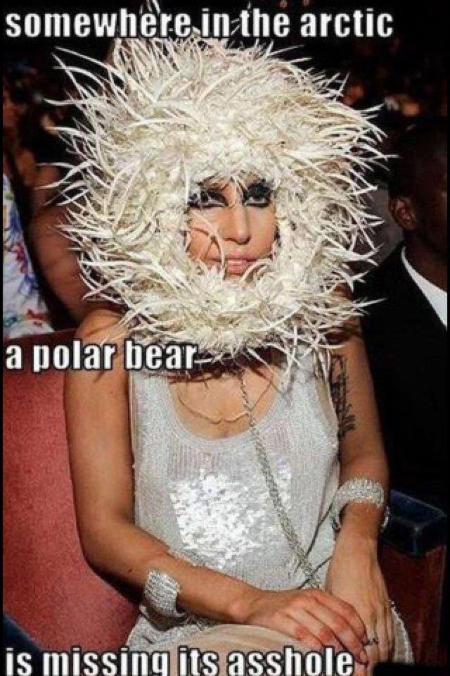 Polar Bear Cruelty. Idno what's uglier... that asshole or the polar bear?.. retoast lady gaga arctic Polar Bear asshole