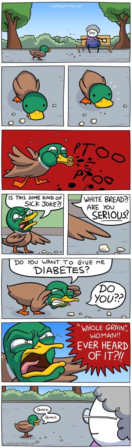 Quack Quack.. . IS THIS SSHE KIND cur SICK Joke?! Quack IS THIS SSHE KIND cur SICK Joke?!
