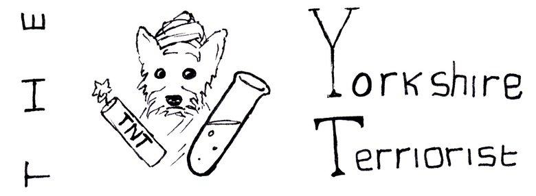 The Yorkshire Terriorist. . Dog Yorkshire Terrio pun OC comic