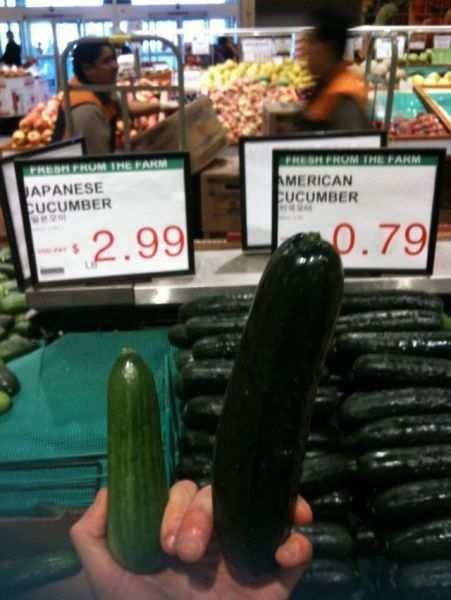 Title. Totally unoriginal content.. Russian cucumber Title Totally unoriginal content Russian cucumber