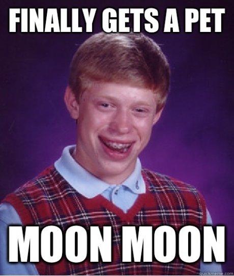 title. .. Moon Moon's FW title Moon Moon's FW