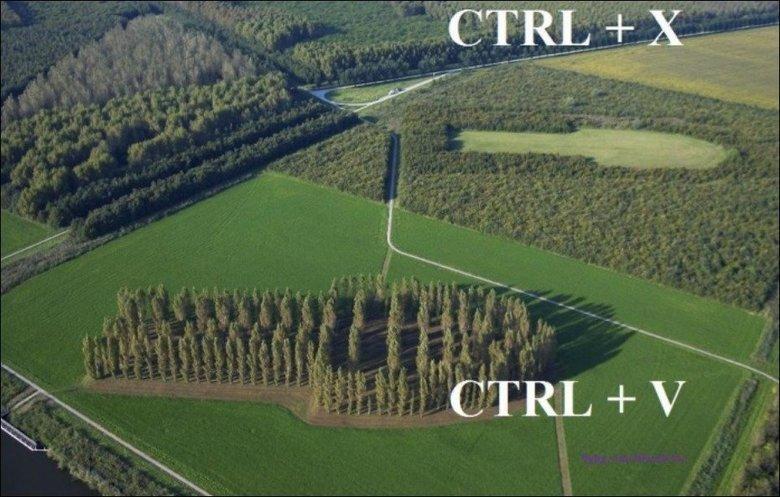 (untitled). . Control X v control x Control V untitled Farm field trees hea copy paste