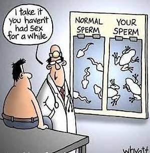 Your sexlife. . sex