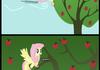 Apple Bucking (Fluttershy Style)