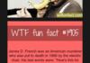 WTF Fun Facts Comp Vol. 1 Part 3