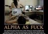 Alpha as fuck