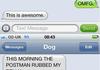 Dog Texts Comp 1