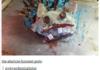 The Next Cake Boss
