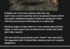 Fallout: Vaults Pt.2