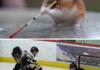 Spaghetti Hamster Photoshop Battle